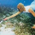 Skeptical Reefkeeping III
