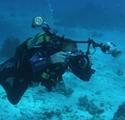 Art of Underwater Photography