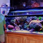 Bradley Syphus & his 225-gallon reef aquarium