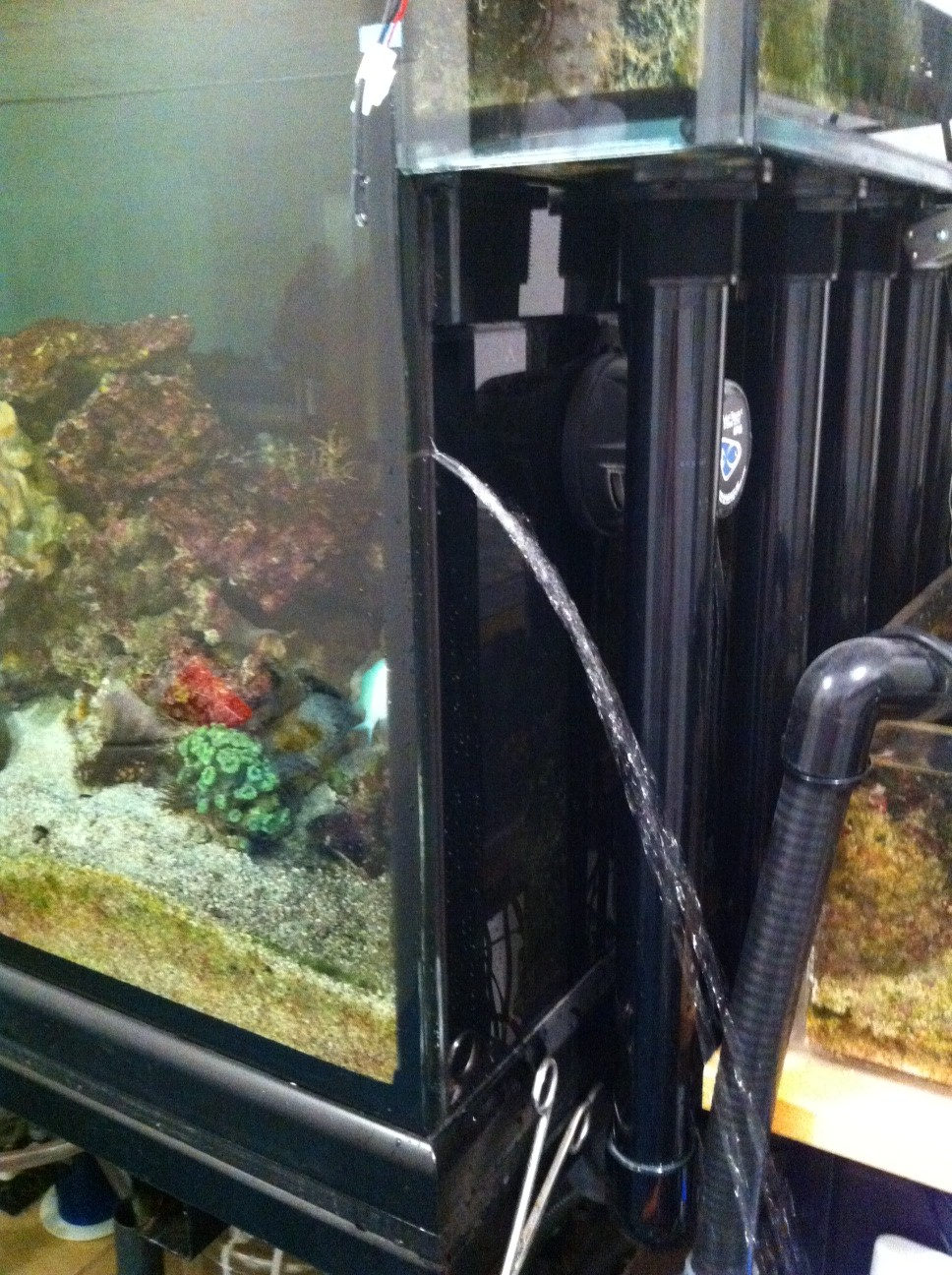 Your tank is leaking - what do you do right now?