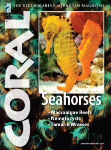 CORAL-JF-2014-Cover-600px