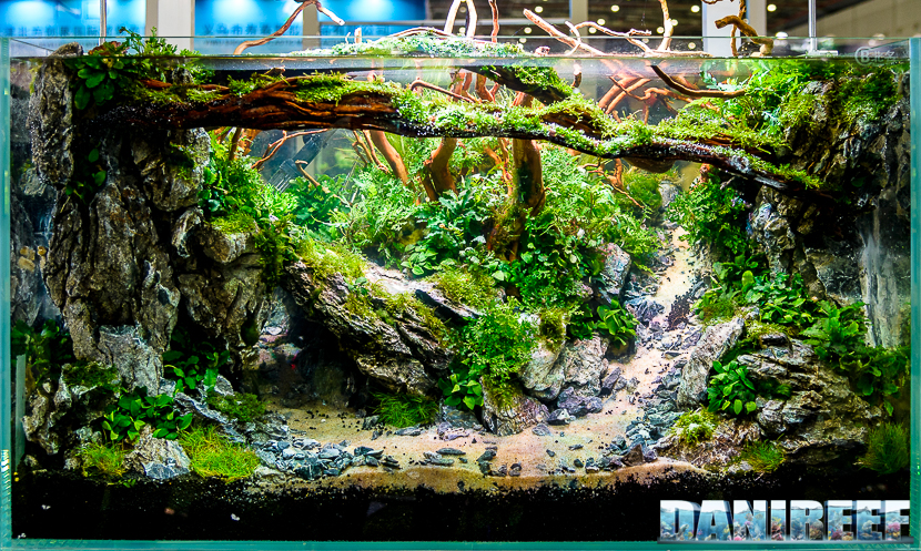 Cips 2017 I M Sure You Ve Never Seen Aquascaping Like This Reefs Com