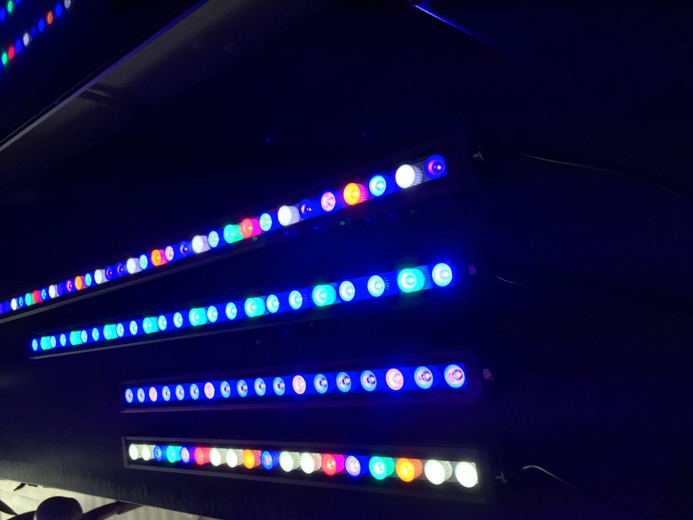 Orphek OR LED light